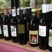 La 'añada 2014' de los vinos blancos de Cantabria genera optimismo
