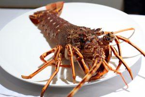 para yantar centrales dedicadas al marisco de la tienda marisqueria restaurante marinamar plato langosta gijon 03 01 11 foto piña