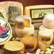 Debate sobre 'El maravilloso mundo del queso'